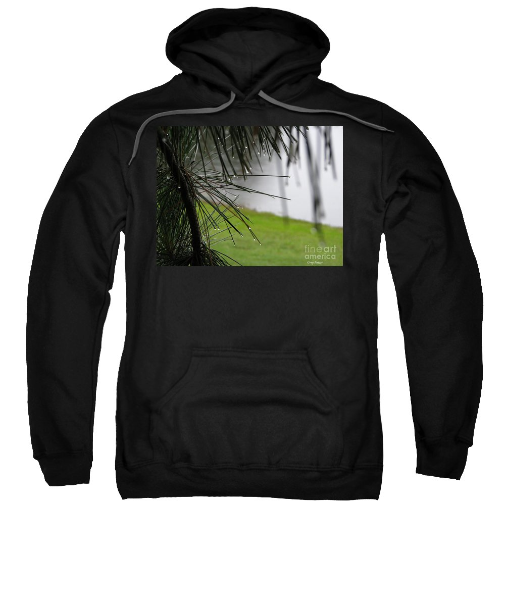 Lakes Sweatshirt featuring the photograph Elements by Greg Patzer