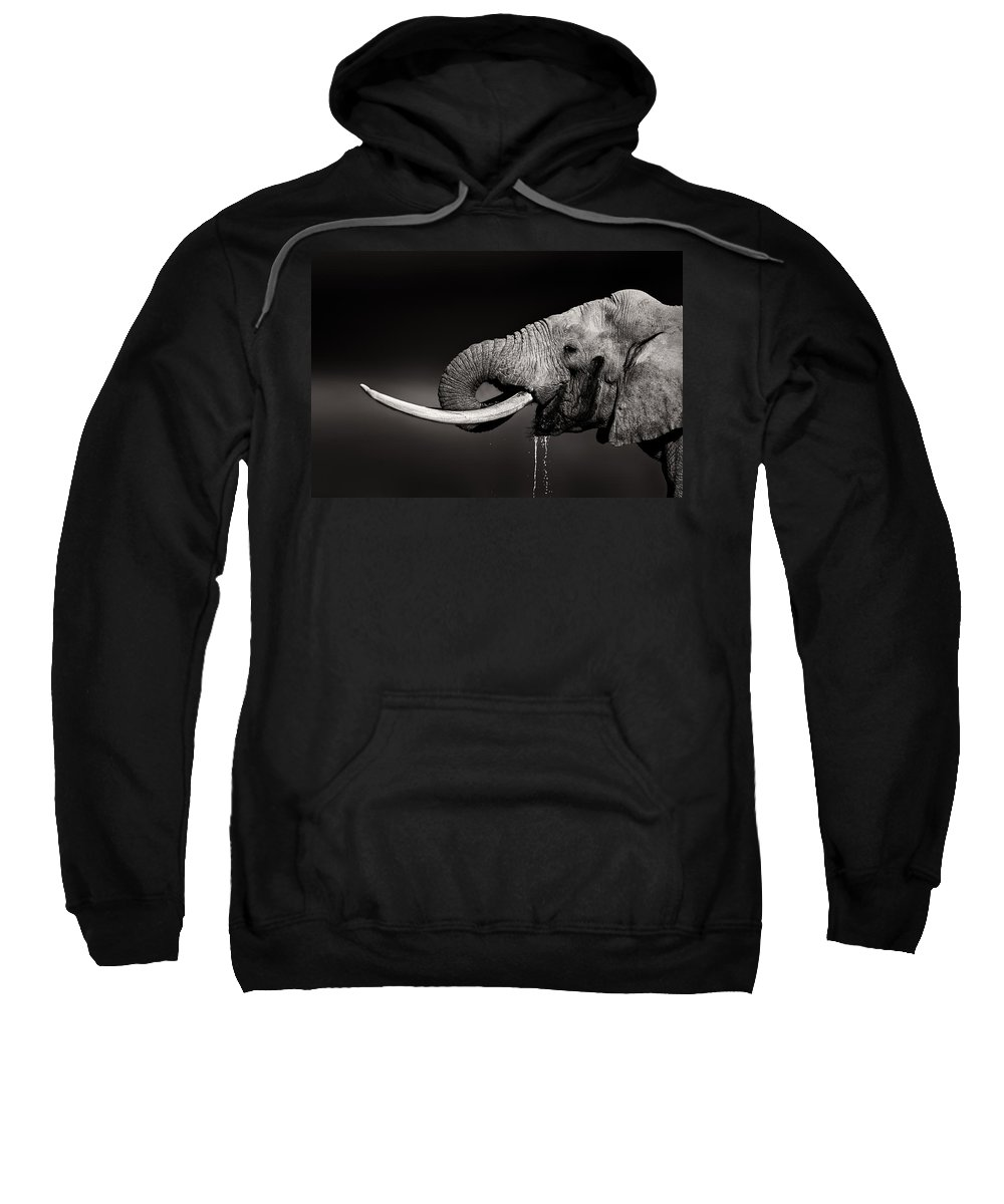 Elephant Sweatshirt featuring the photograph Elephant Bull Drinking Water - Duetone by Johan Swanepoel