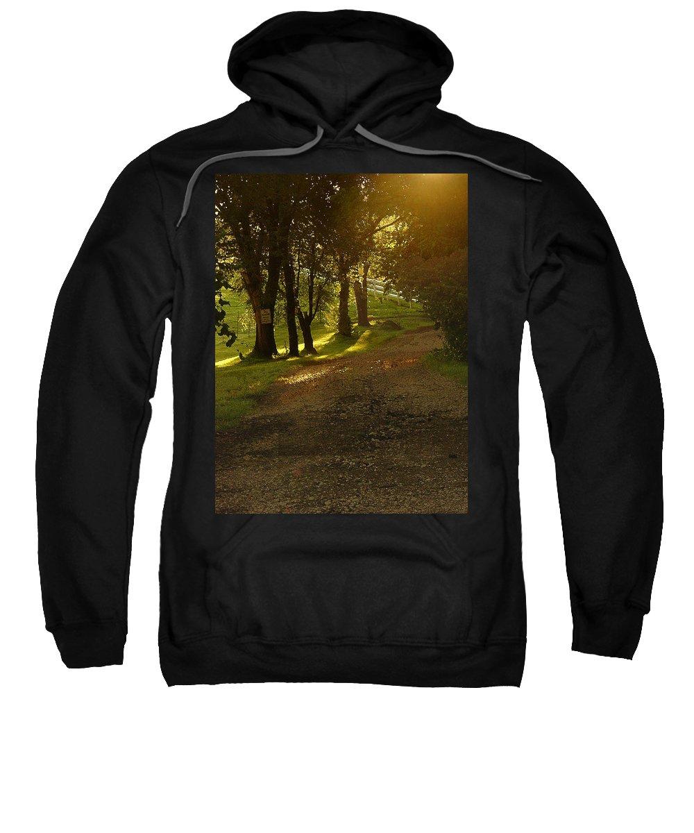 Landscape Sweatshirt featuring the photograph Evening Path by Steve Karol