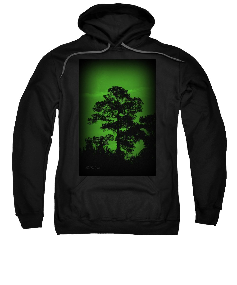 Tree Sweatshirt featuring the photograph Evening Pine by Donna Bentley