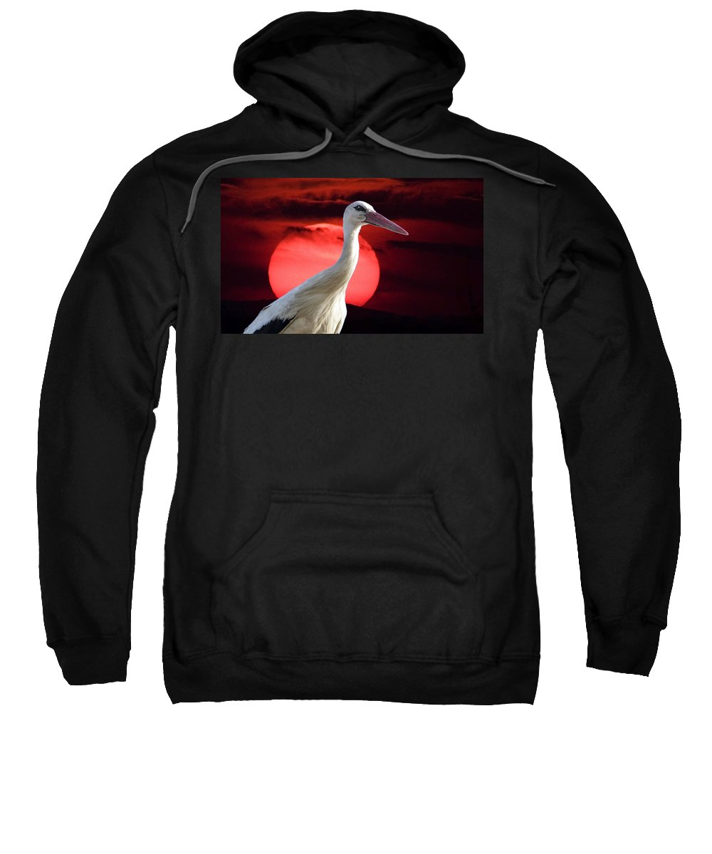 Stork Sweatshirt featuring the photograph Evening Stork by Cliff Norton