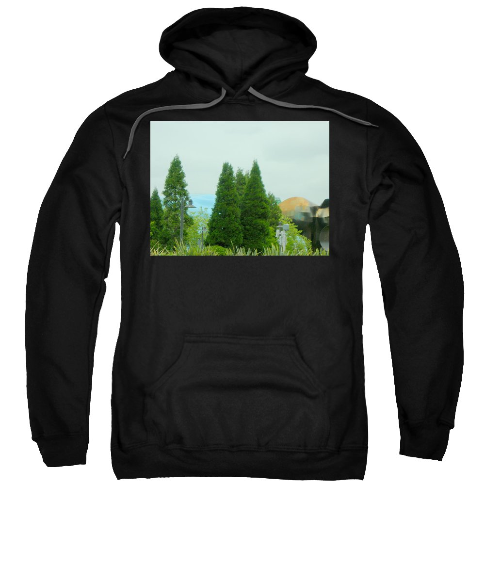 Seattle Sweatshirt featuring the photograph Evergreen Mo Pop by Maro Kentros