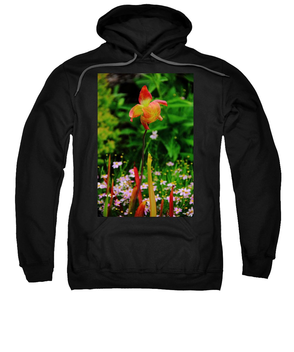 Flower Sweatshirt featuring the photograph Exotic Orchid by Allen Nice-Webb
