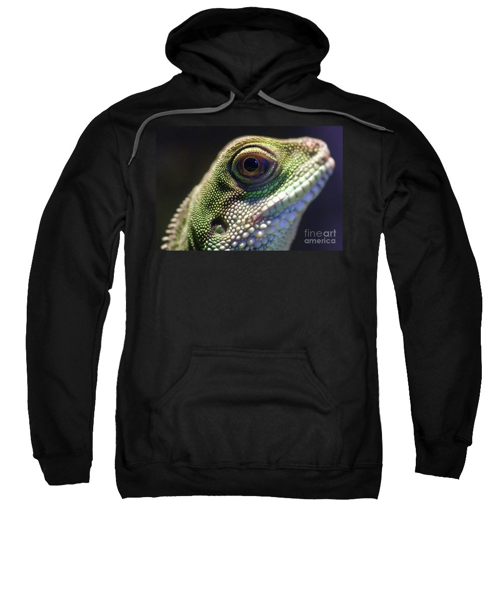 Animal Sweatshirt featuring the photograph Eye Of Lizard by Charles Dobbs