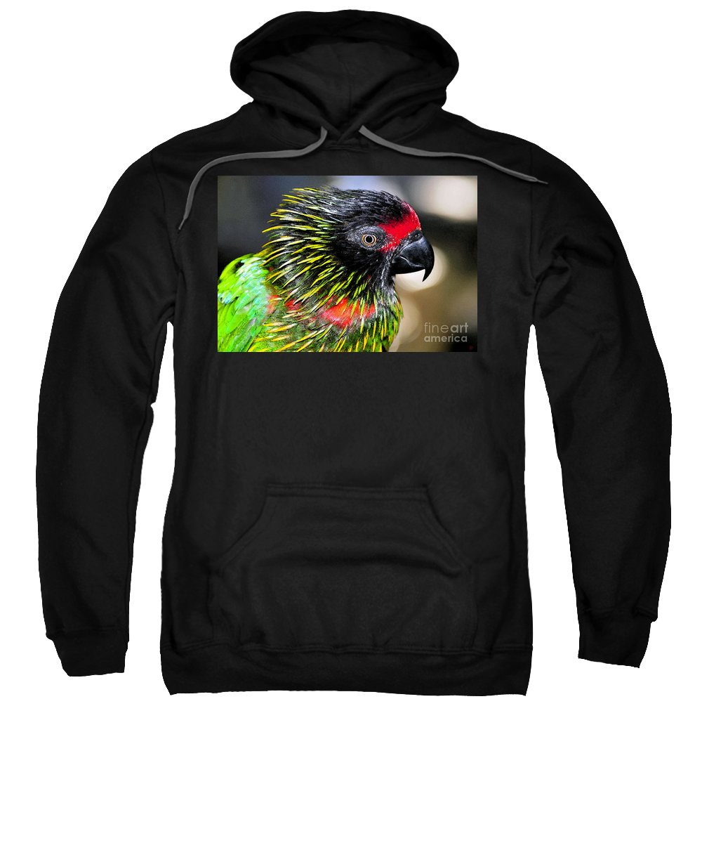Bird Sweatshirt featuring the painting Eye Of The Tropics by David Lee Thompson
