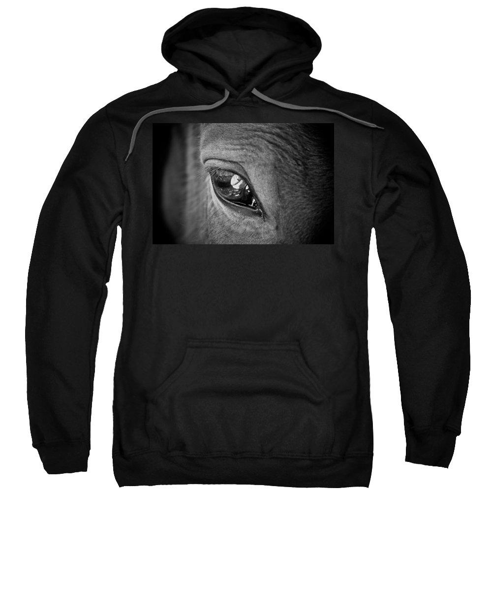 Eye Sweatshirt featuring the photograph Eye See You by Hannah Breidenbach