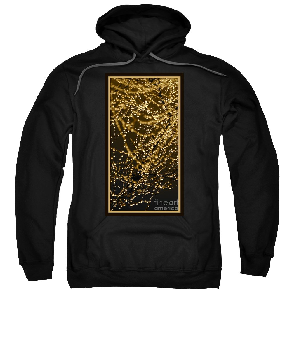 Drops Of Water Sweatshirt featuring the photograph Fairy Lanterns by Carol Groenen