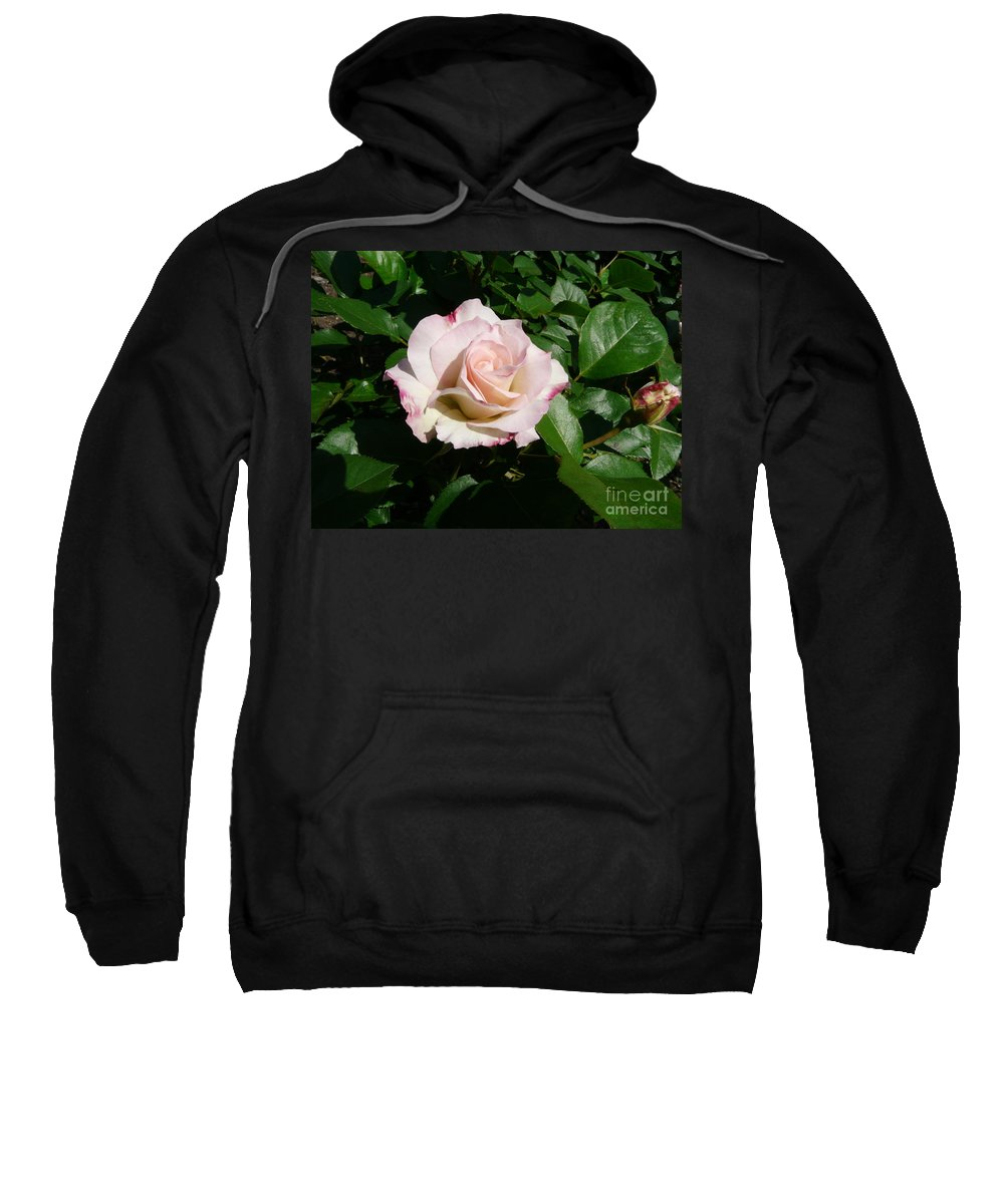 Rose Sweatshirt featuring the photograph Fait Accompli by Kendall Eutemey