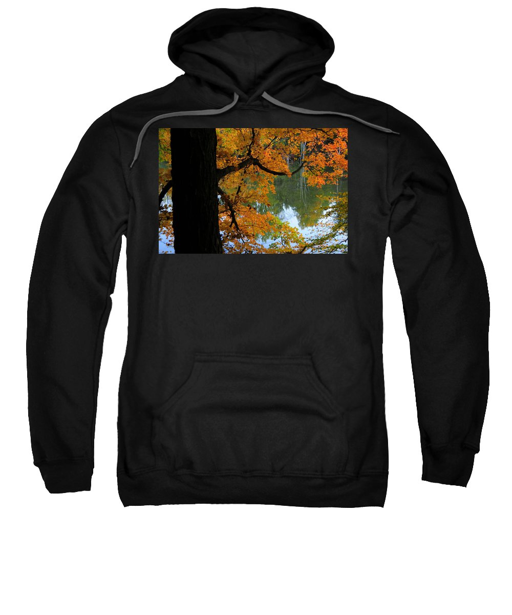 Tree Sweatshirt featuring the photograph Fall Day At The Lake by David Arment