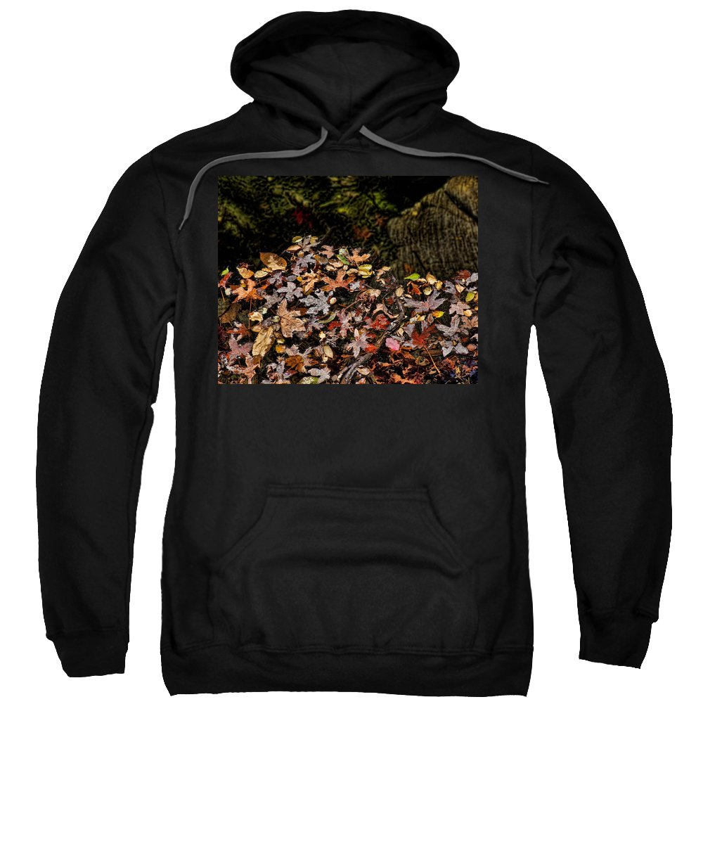 Maple Leaves Sweatshirt featuring the photograph Fall In August by Kelley King