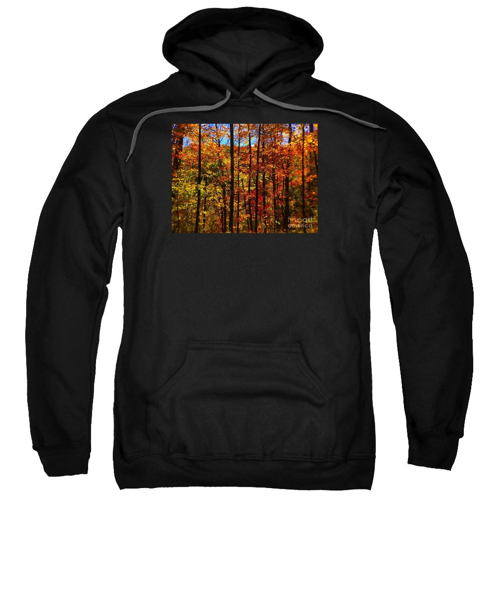 Barbara Griffin Sweatshirt featuring the photograph Fall In Ontario Canada by Barbara Griffin