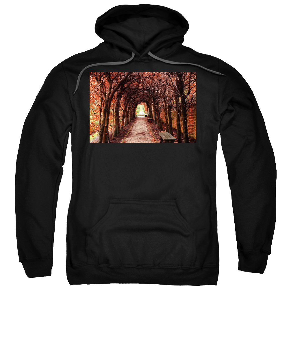 American Sweatshirt featuring the photograph Fall Passage by Lou Ford