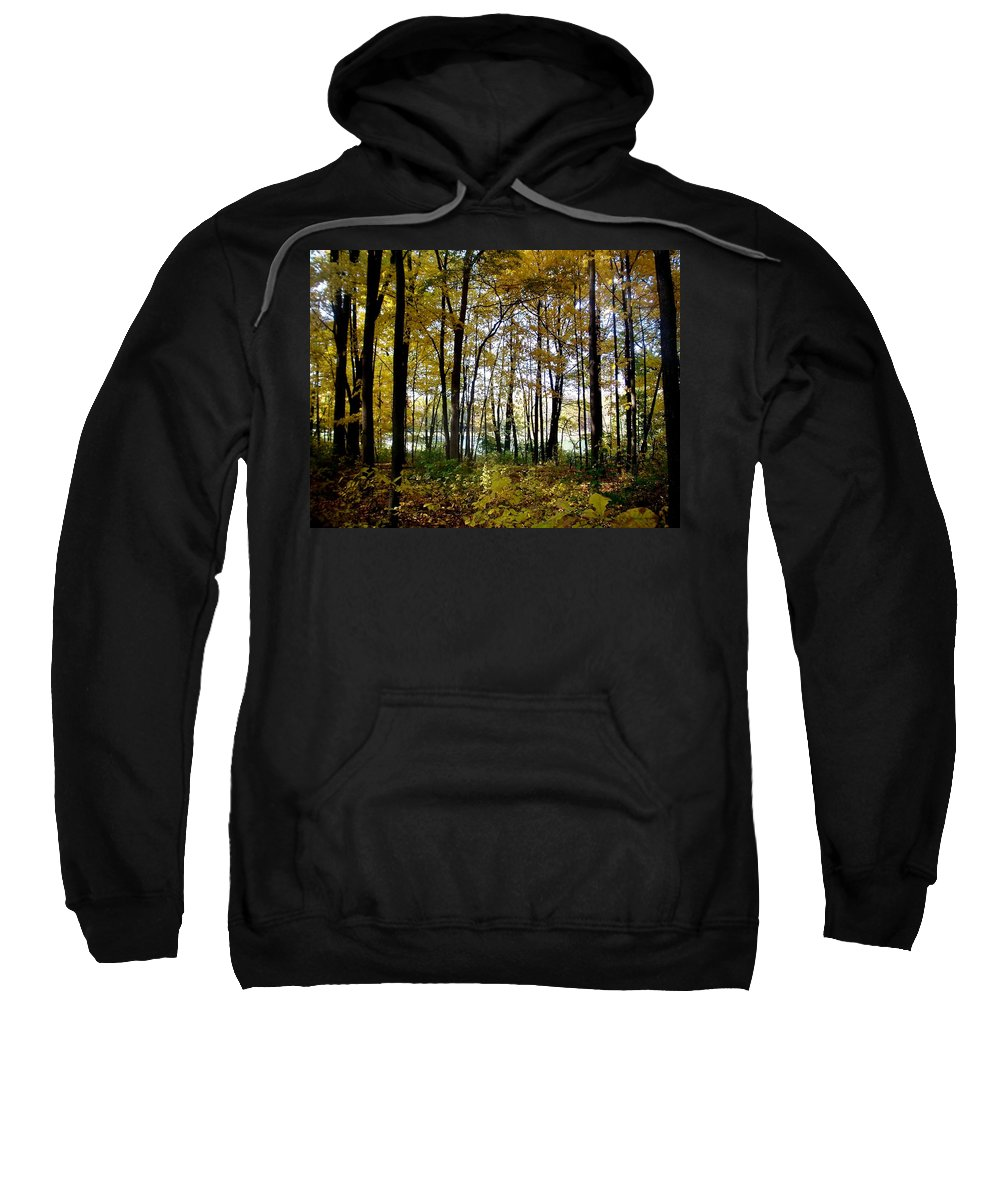 Fall Sweatshirt featuring the photograph Fall Series 3 by Anita Burgermeister