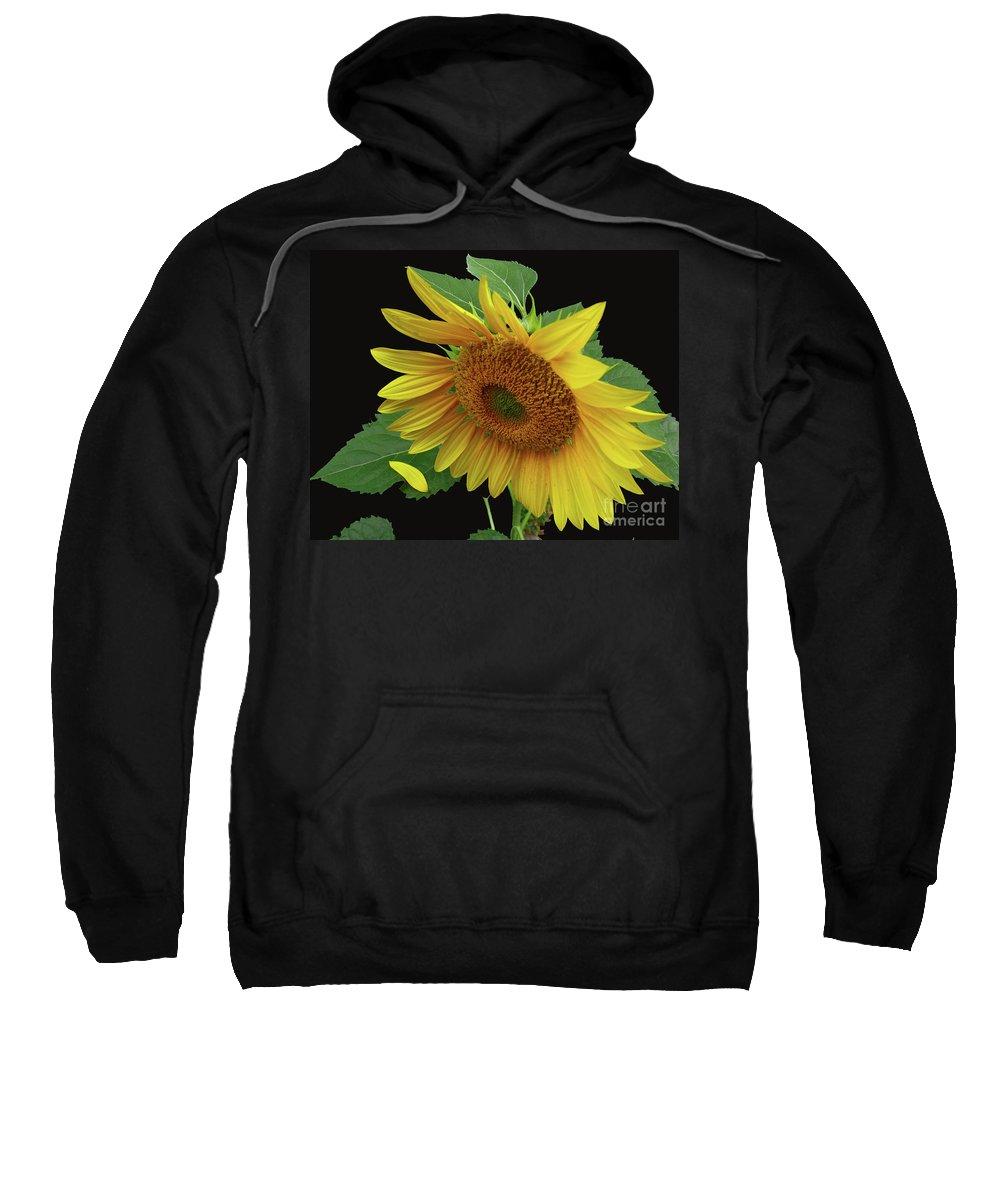Sunflower Sweatshirt featuring the photograph Fallen by Douglas Stucky