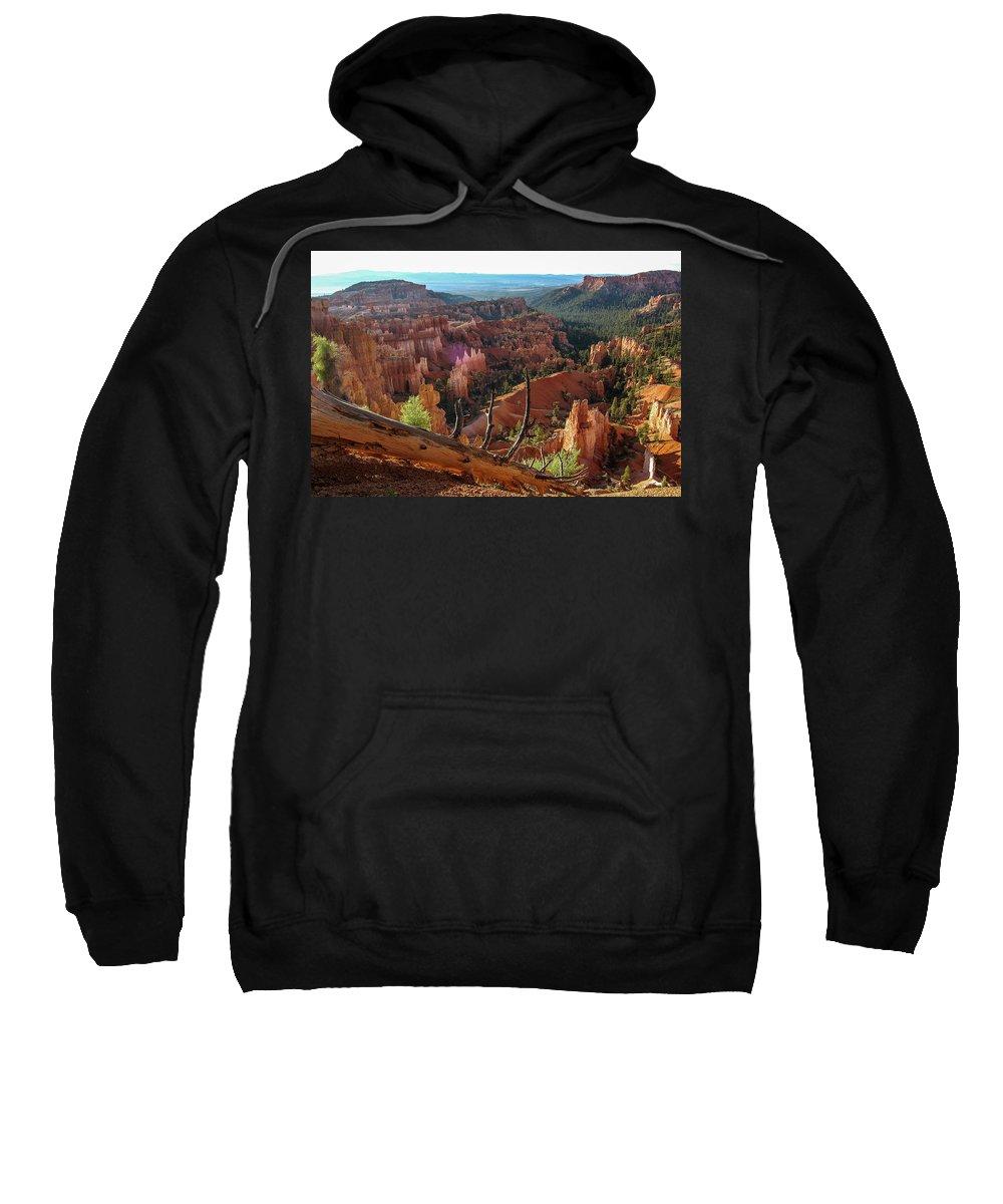 Bryce Canyon Sweatshirt featuring the photograph Fallen Tree by Bob Cuthbert