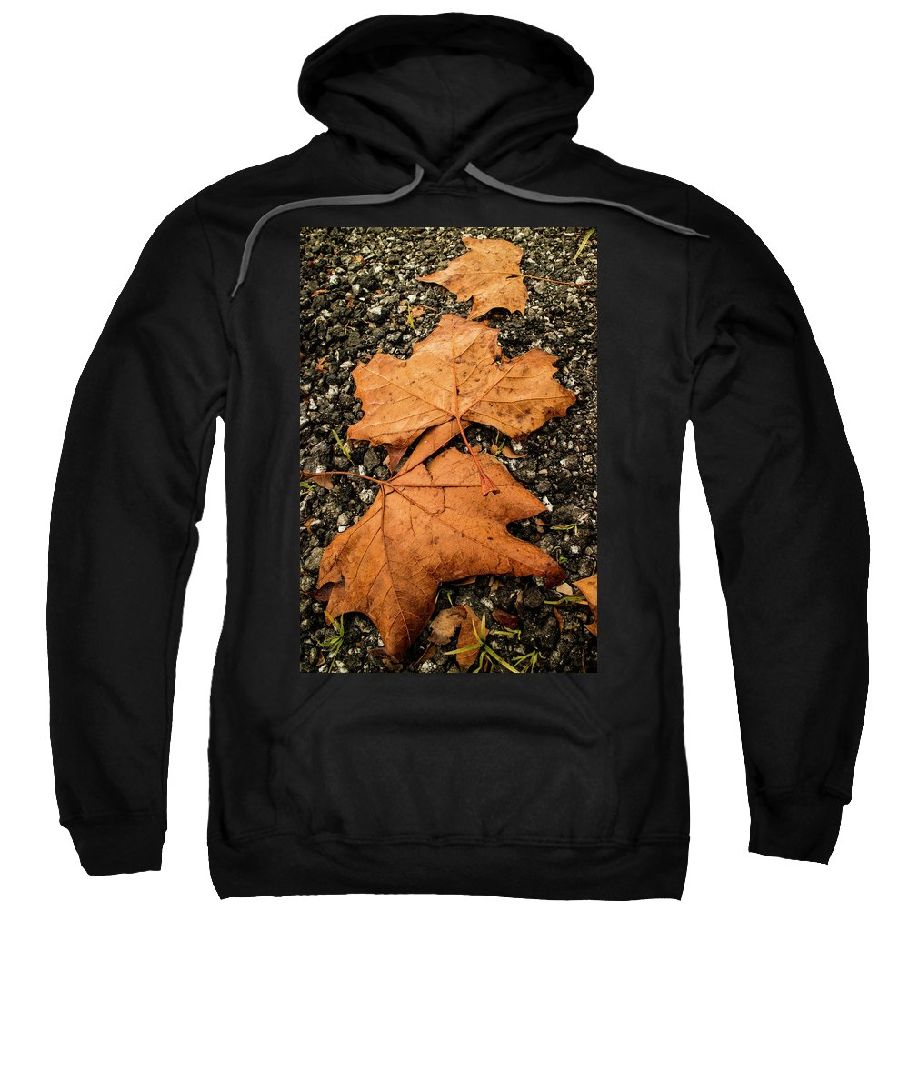 Landscape Sweatshirt featuring the photograph Falling Leafs by Antonio Rei