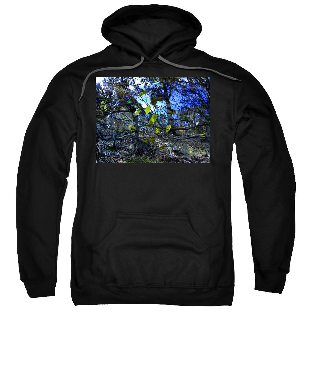 Leaves Sweatshirt featuring the photograph Falling Leaves by Kelly Jade King
