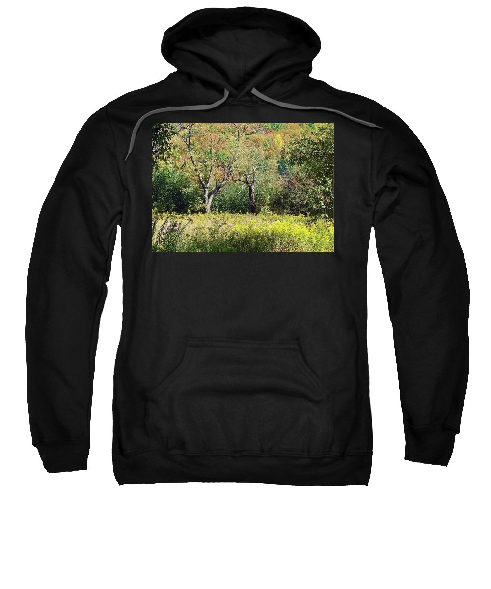 Landscape Sweatshirt featuring the photograph Fallow Meadow by Christian Mattison