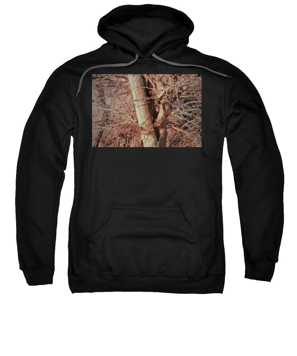 Fence Sweatshirt featuring the photograph Fence Post Buddy by Troy Stapek