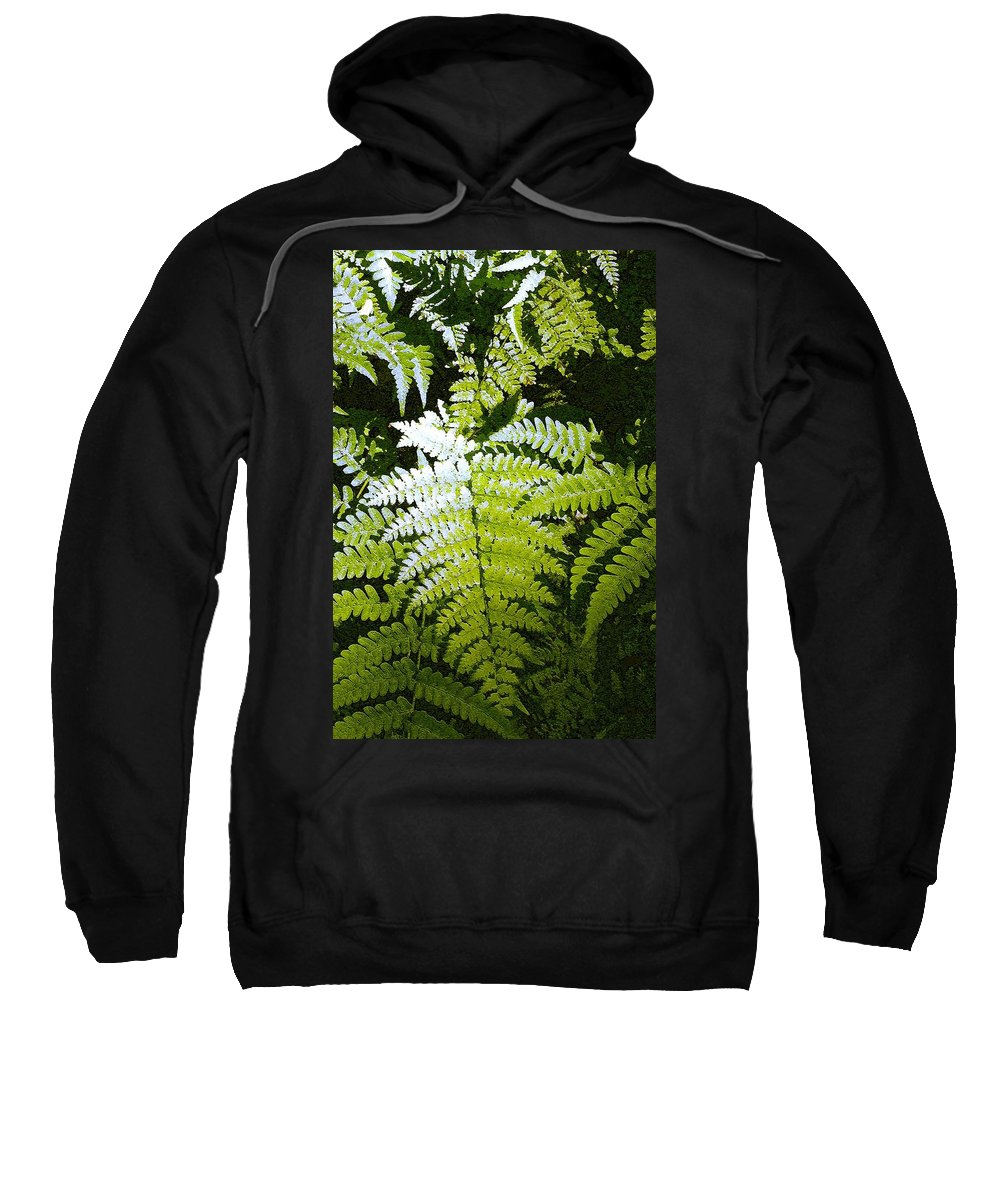 Ferns Sweatshirt featuring the photograph Ferns by Nelson Strong