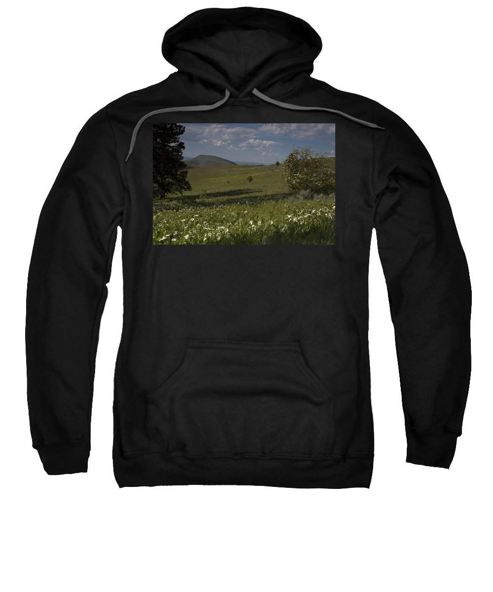 Field Sweatshirt featuring the photograph Field Of White Flowers by Sara Stevenson