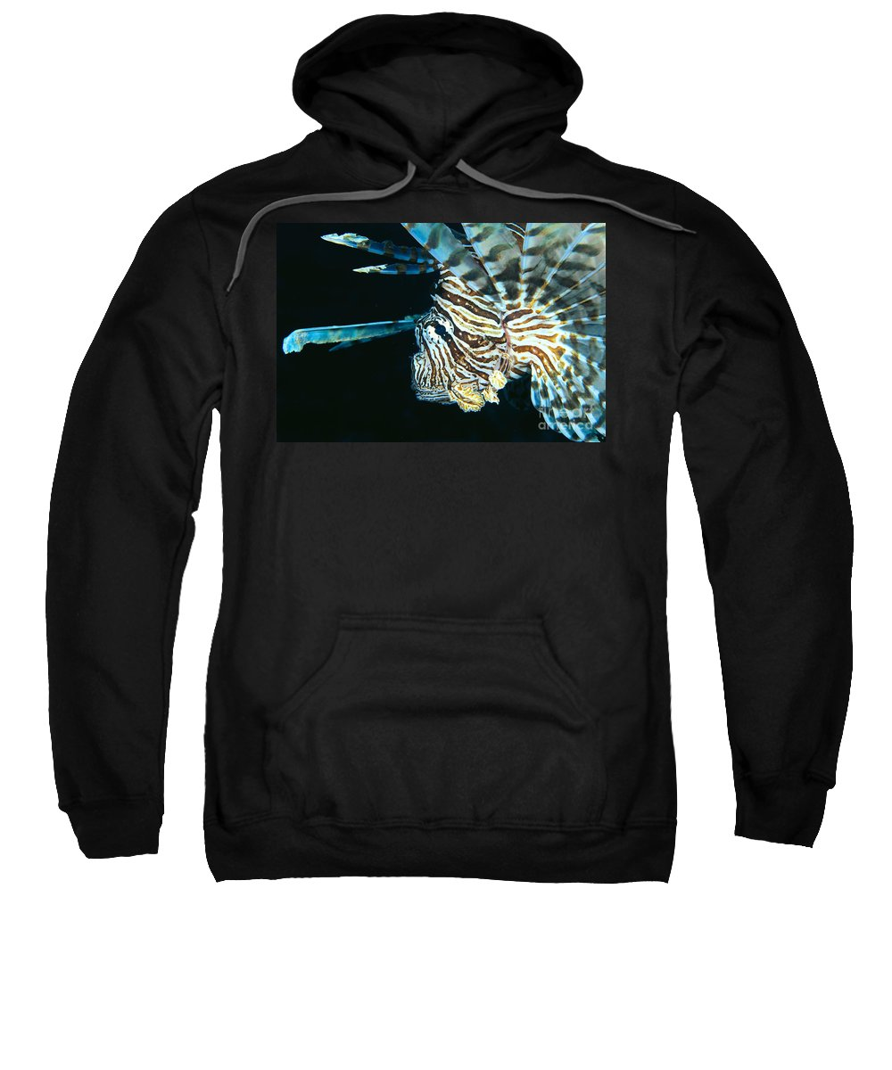 Animal Art Sweatshirt featuring the photograph Fiji, Lionfish by Dave Fleetham - Printscapes