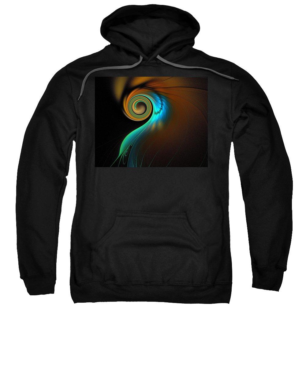 Digital Art Sweatshirt featuring the digital art Fine Feathers by Amanda Moore