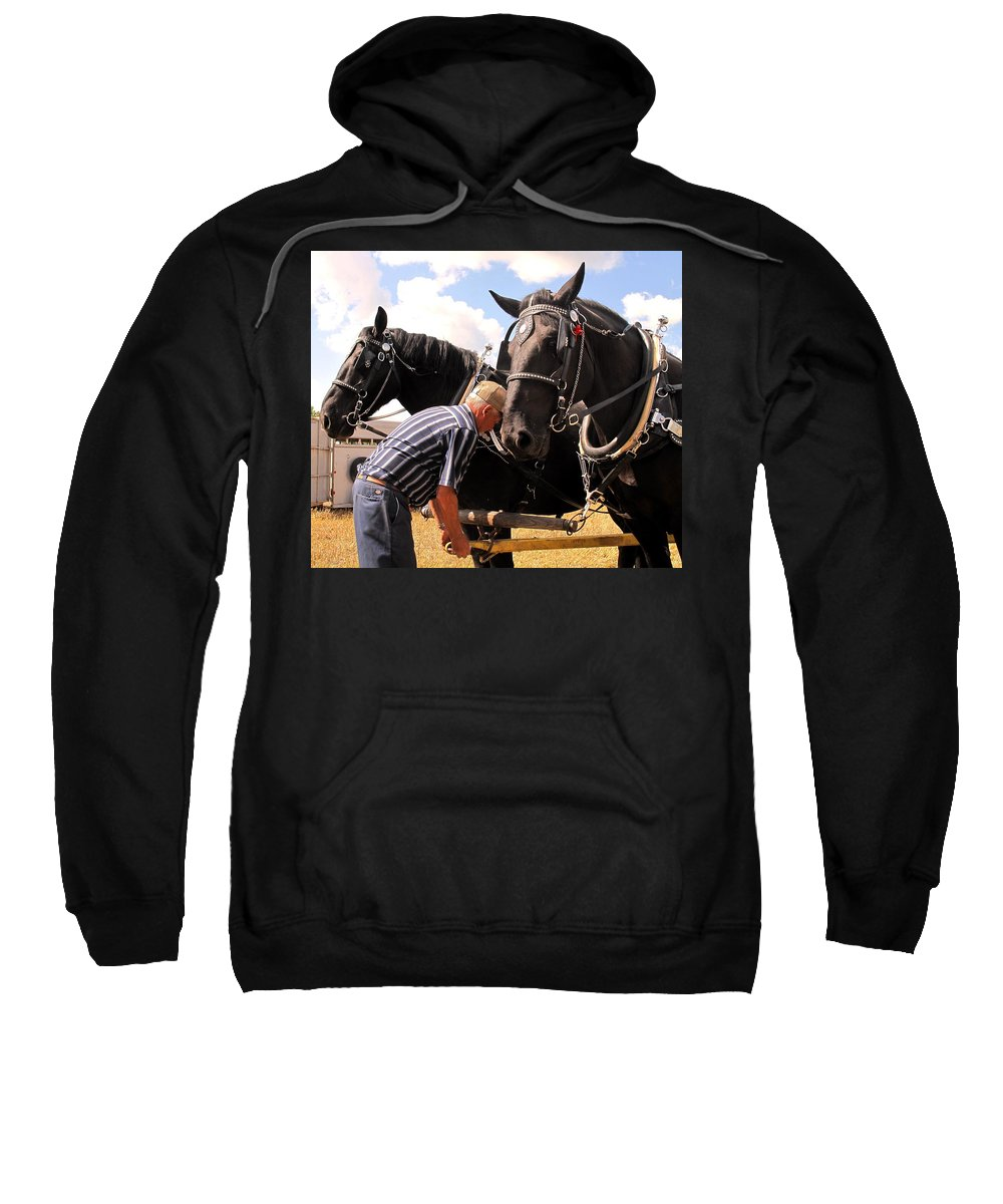 Horses Sweatshirt featuring the photograph Fine Tuning by Ian MacDonald