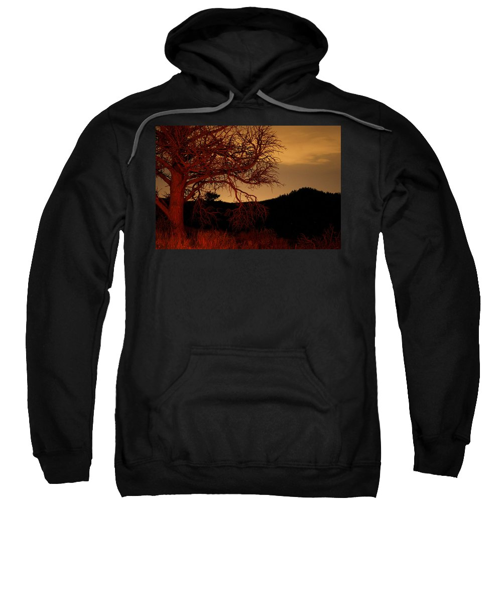 Landscape Sweatshirt featuring the photograph Fire Tree by Jeffery Ball