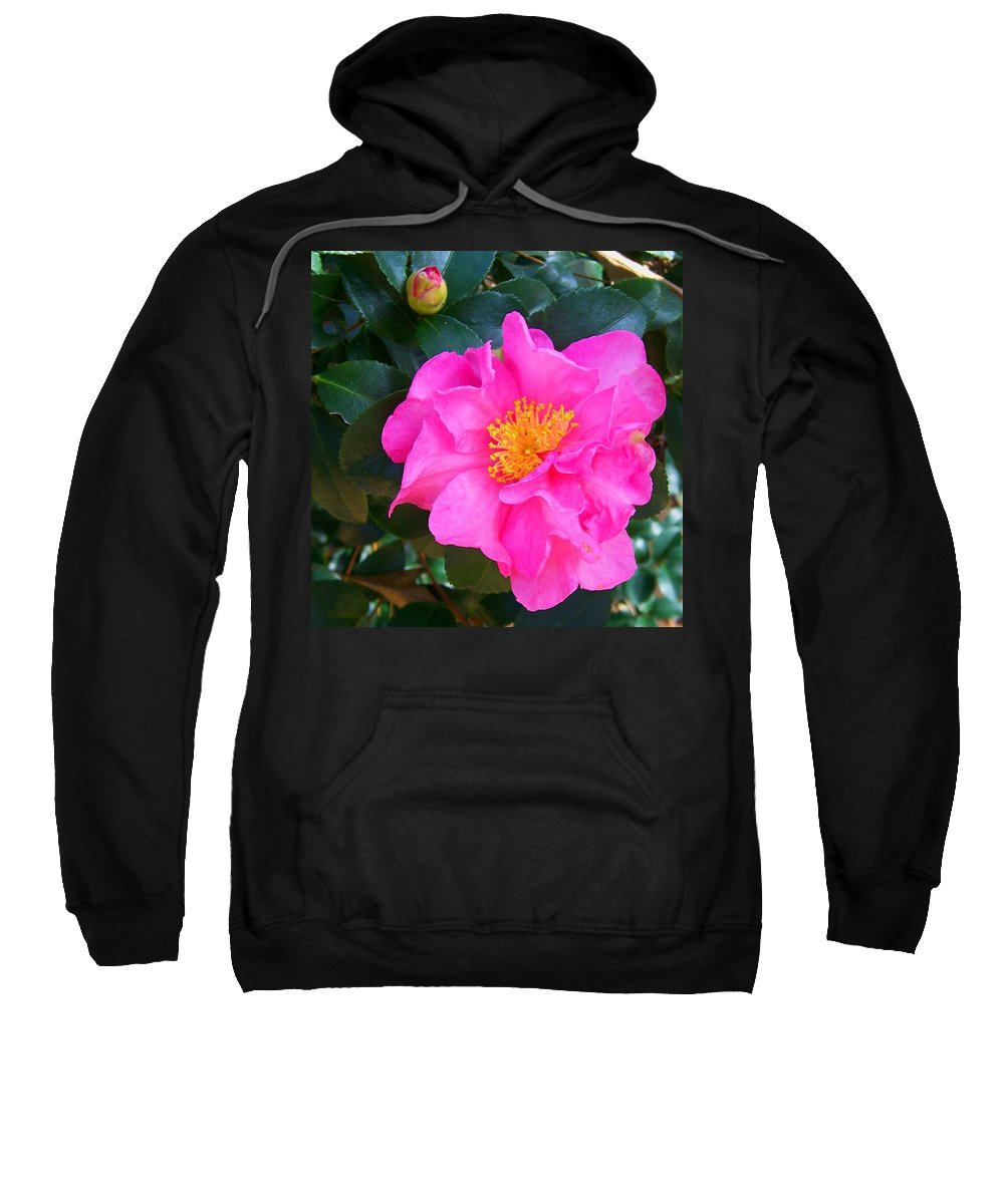 Camelia Sweatshirt featuring the photograph Firey Pink Camelia by Laurie Paci
