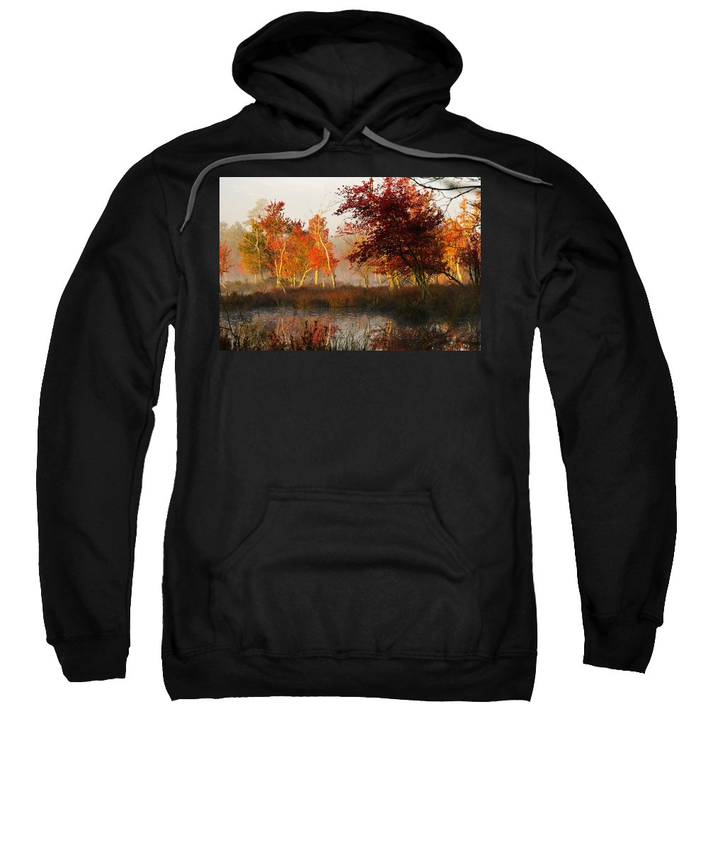 Landscape Sweatshirt featuring the photograph First Light At The Pine Barrens by Louis Dallara