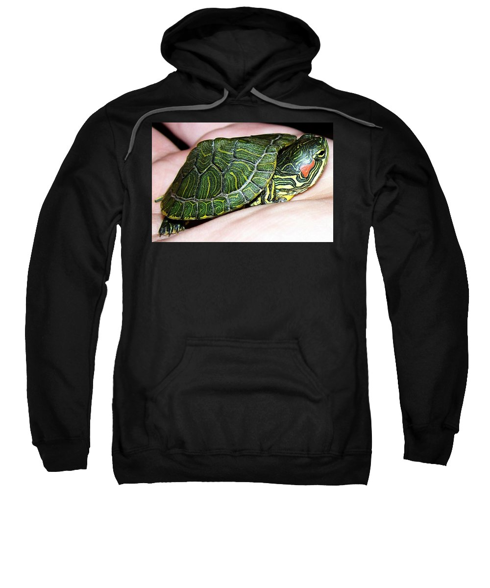 Turtle Sweatshirt featuring the photograph Fits In The Palm by Sara Raber