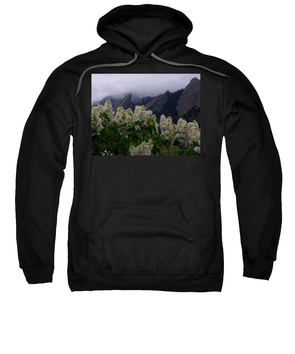 Flatirons Boulder Colorado Lilacs Flowers Spring Landscapes Misty Spring Sweatshirt featuring the photograph Flatirons White Lilacs by George Tuffy