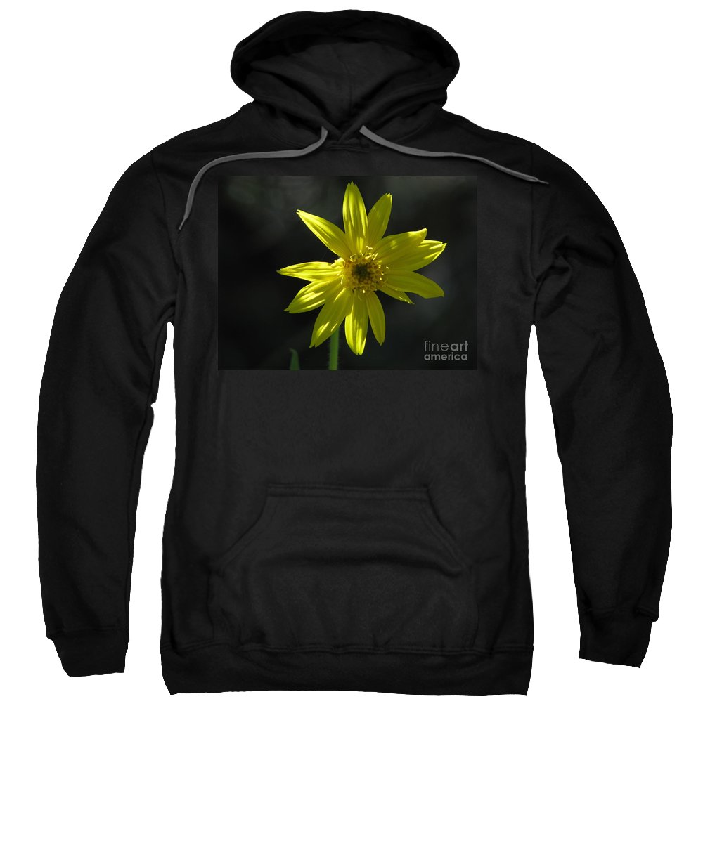 Light Sweatshirt featuring the photograph Floral by Amanda Barcon