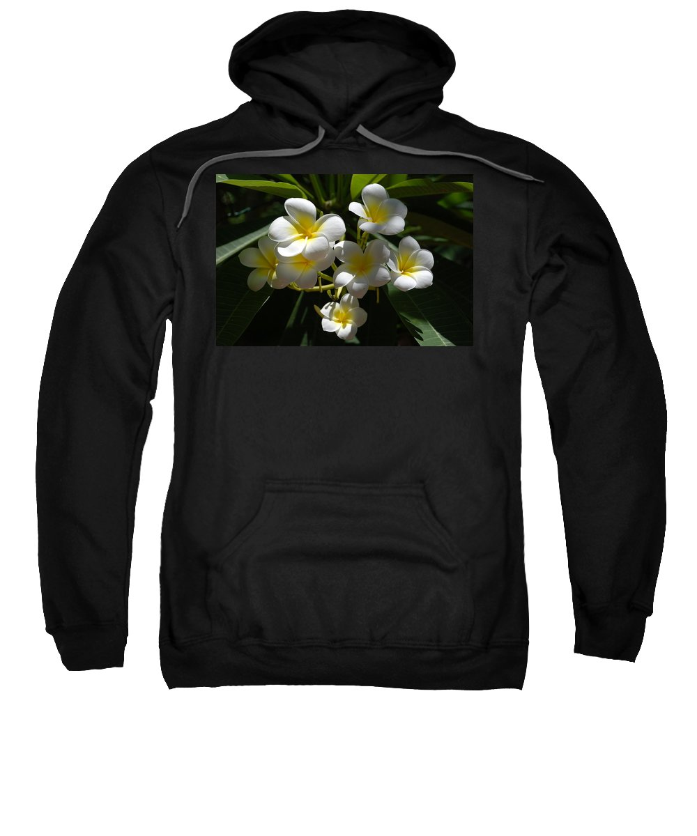 Nature Sweatshirt featuring the photograph Floral Beauties by Rob Hans