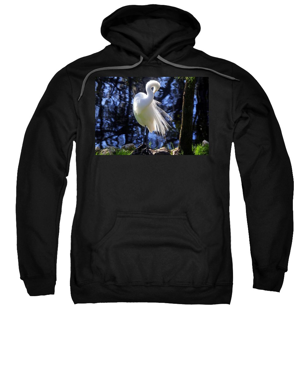 Great Egret Sweatshirt featuring the photograph Florida Living by David Lee Thompson