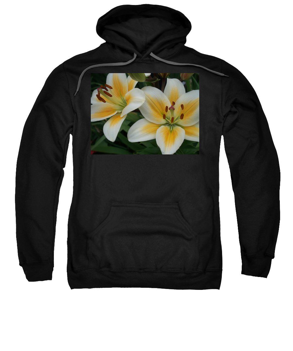 Flower Sweatshirt featuring the photograph Flower Close Up 2 by Anita Burgermeister
