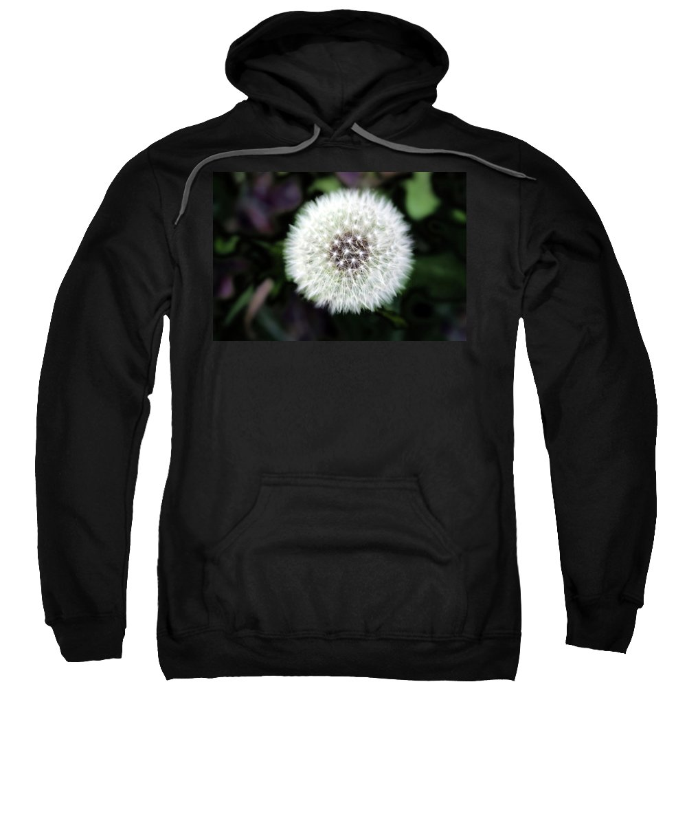 Weed Sweatshirt featuring the photograph Flower Of Flash by Mark Ashkenazi