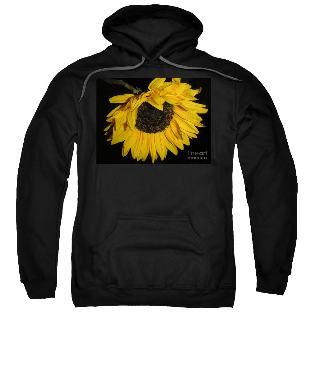 Nature Sweatshirt featuring the photograph Flower Of The Sun Too by Lucyna A M Green