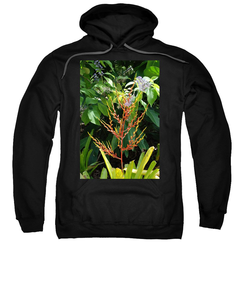 Macro Sweatshirt featuring the photograph Flower Plants by Rob Hans
