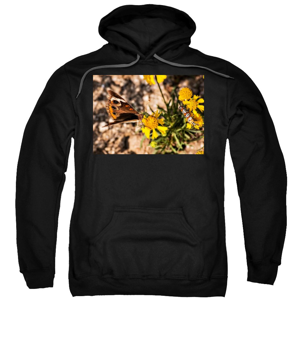 Butterfly Sweatshirt featuring the photograph Flower Power Bug And Butterfly by Gary Adkins