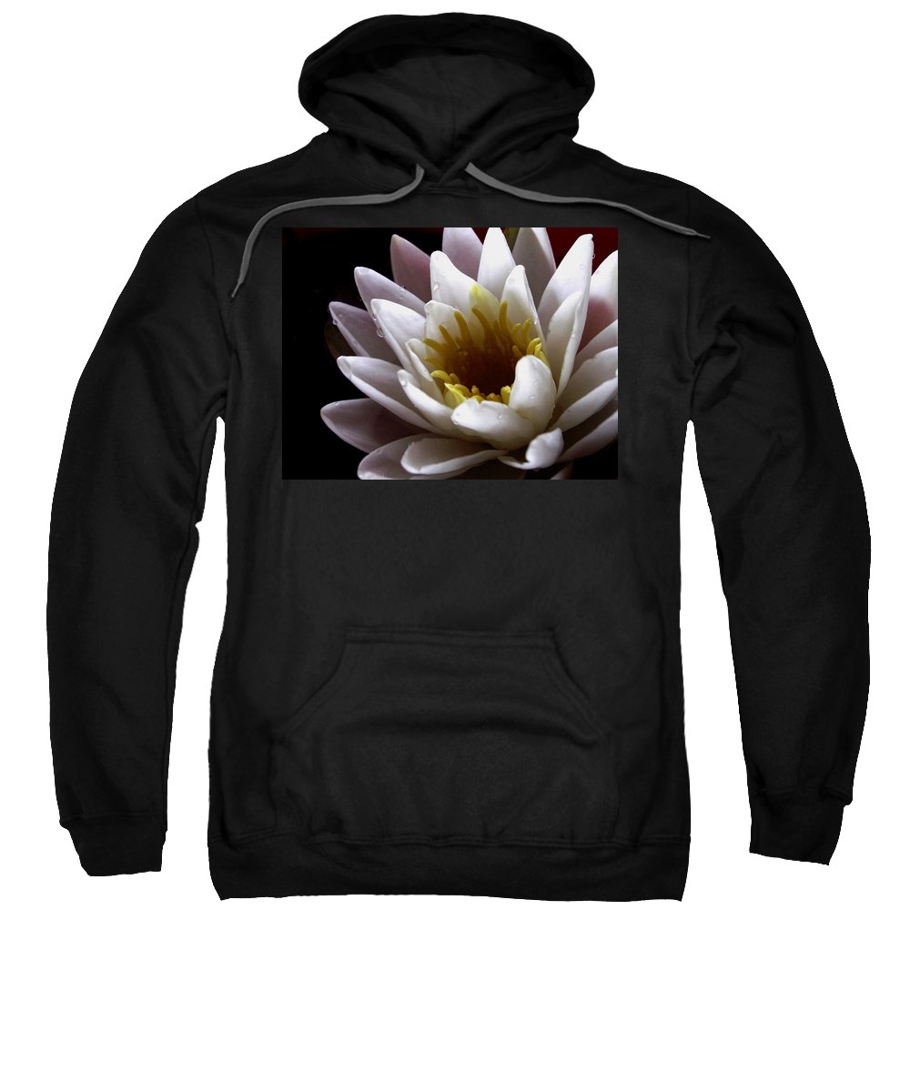 Flowers Sweatshirt featuring the photograph Flower Waterlily by Nancy Griswold