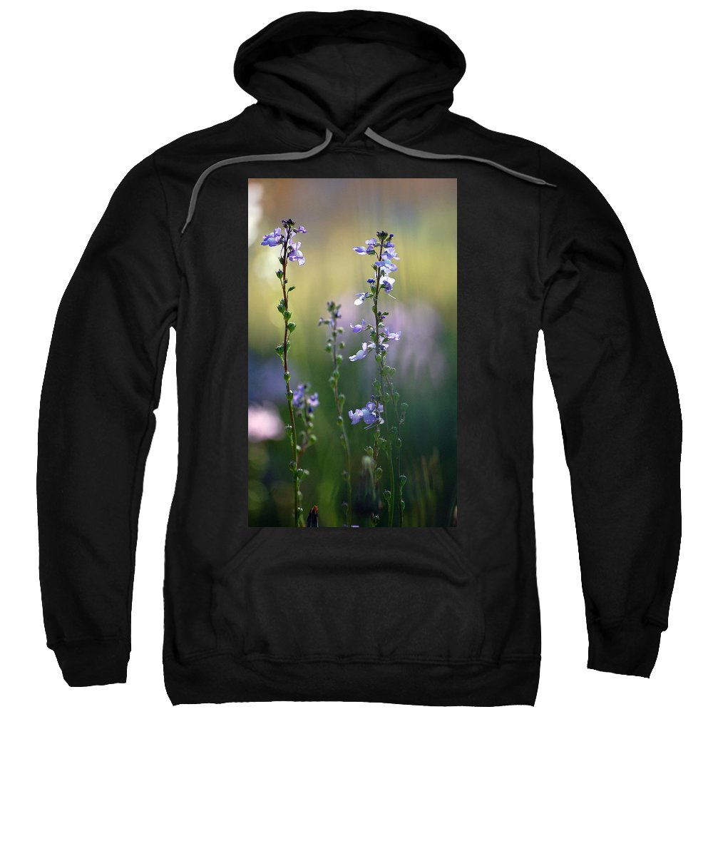 Nature Sweatshirt featuring the photograph Flowers By The Pond by Robert Meanor