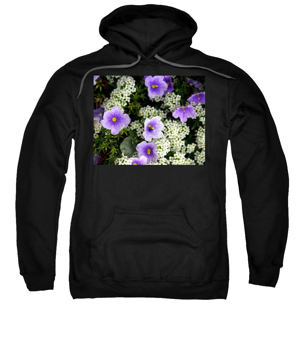 Flowers Sweatshirt featuring the photograph Flowers Etc by Marty Koch