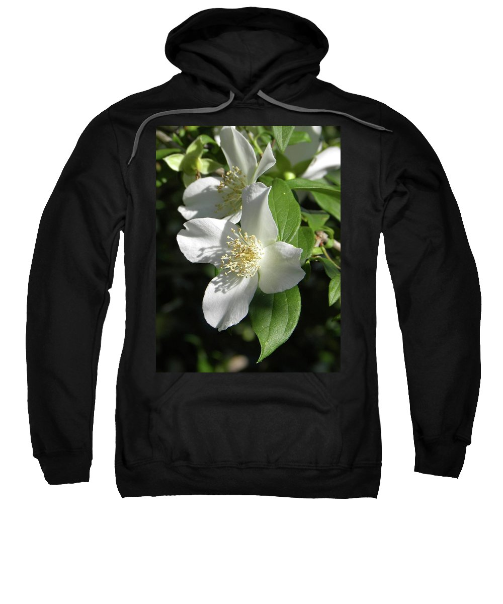 Flower Sweatshirt featuring the photograph Fluer Blanche Avec Les Feuilles Vertes by Shannon Turek