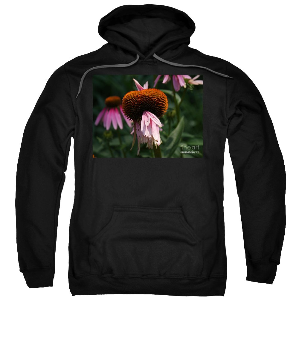 Floral Sweatshirt featuring the photograph Fly Eyes by Shelley Jones