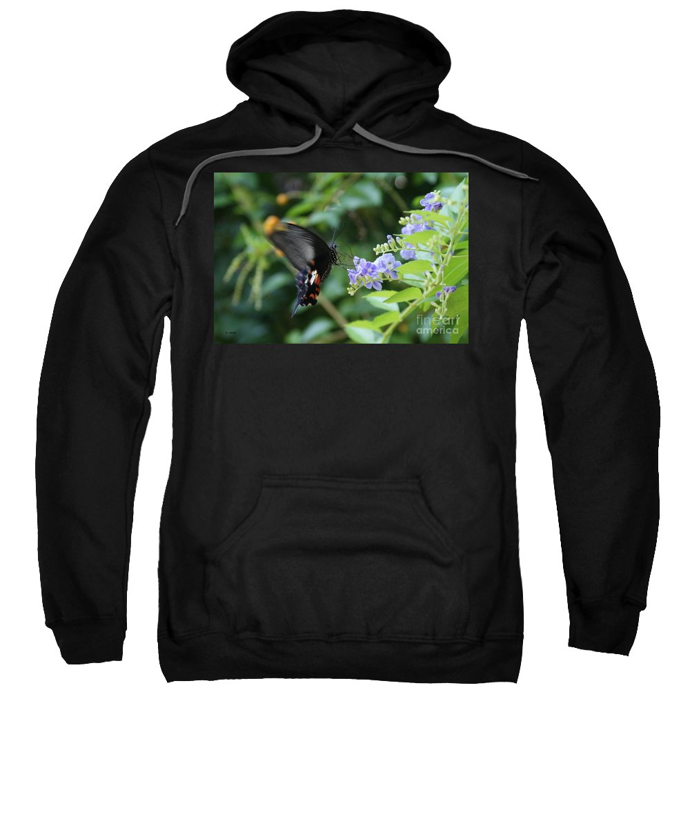 Butterfly Sweatshirt featuring the photograph Fly In Butterfly by Shelley Jones