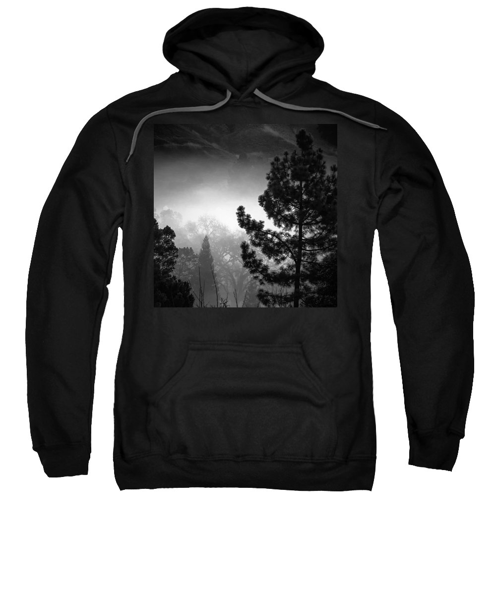 Landscape Sweatshirt featuring the photograph Fog In The Trees by Laura Macky