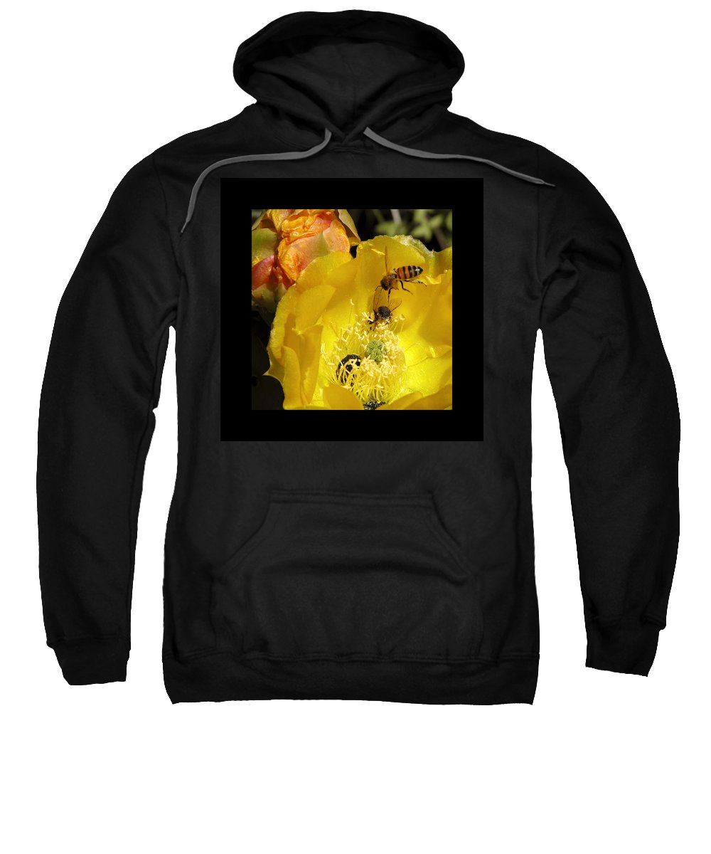 Flower Sweatshirt featuring the photograph Follow The Buzz by Stephen Anderson