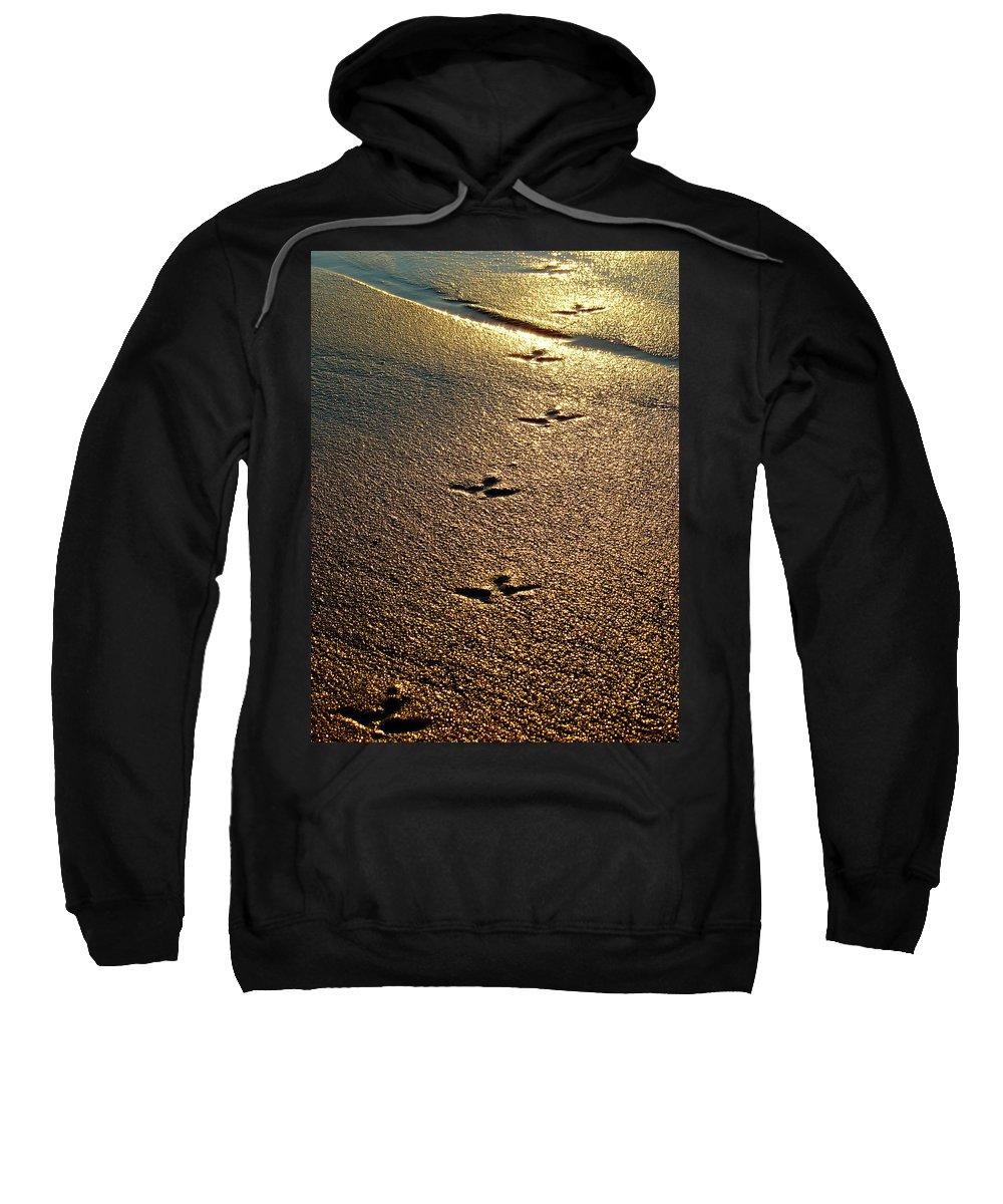 Sand Sweatshirt featuring the photograph Footprints - Bird by Jill Reger
